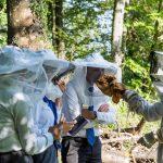 2018 08 08 crcs honey harvest workshop 4 of 15 1 1